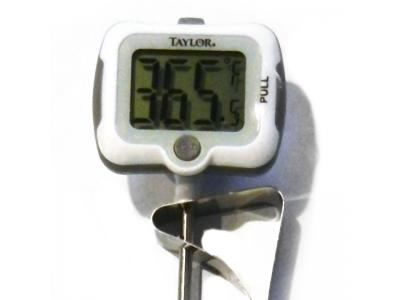 Taylor 9839 Classic Digital Candy & Deep Fry Thermometer - 9839-15