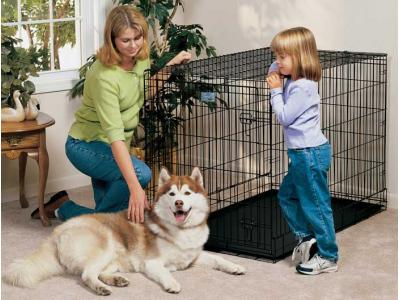 Midwest Life Stages 48'' Single Door Dog Crate  - LS-1648